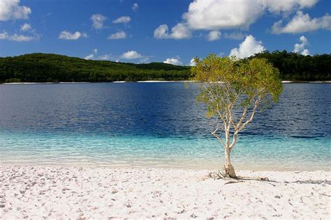 11 Top-Rated Attractions & Things to Do on Fraser Island