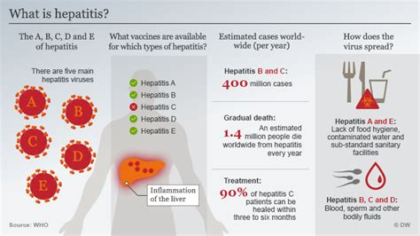 Hepatitis - the facts from A to E   Science  In-depth