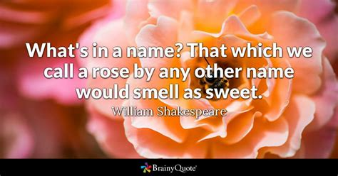 What's in a name? That which we call a rose by any other